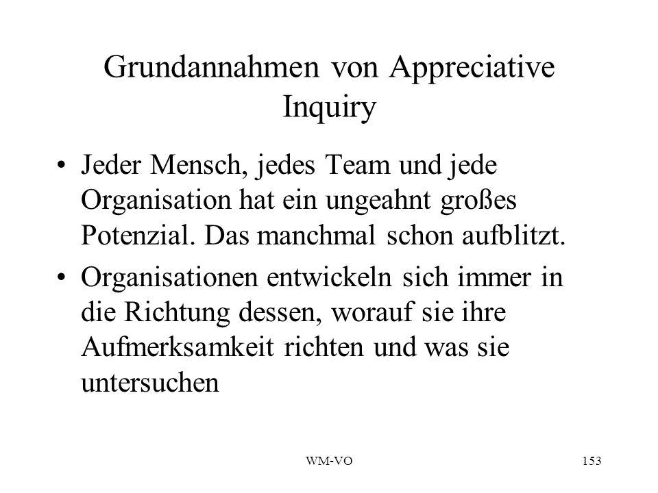 WM-VO153 Grundannahmen von Appreciative Inquiry Jeder Mensch, jedes Team und jede Organisation hat ein ungeahnt großes Potenzial.