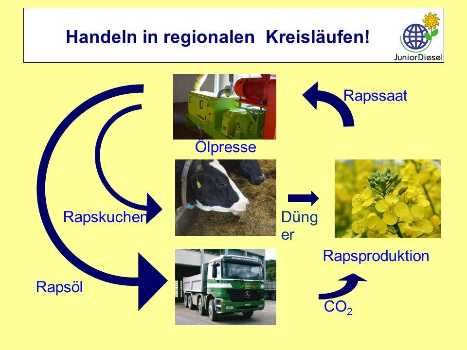 Handeln in regionalen Kreisläufen! RapskuchenDüng er Ölpresse Rapsproduktion Rapssaat CO 2 Rapsöl