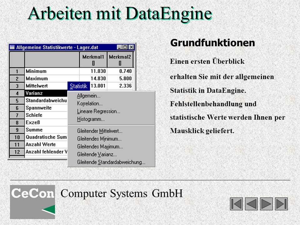 Computer Systems GmbH Arbeiten mit DataEngine Einen ersten Überblick erhalten Sie mit der allgemeinen Statistik in DataEngine.