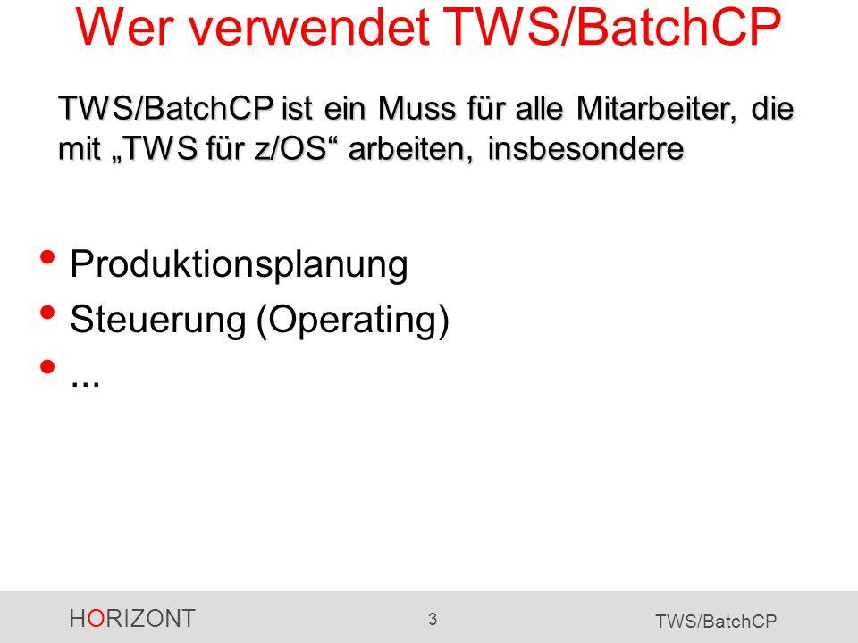 HORIZONT 3 TWS/BatchCP Wer verwendet TWS/BatchCP Produktionsplanung Steuerung (Operating)... TWS/BatchCP ist ein Muss für alle Mitarbeiter, die mit TW