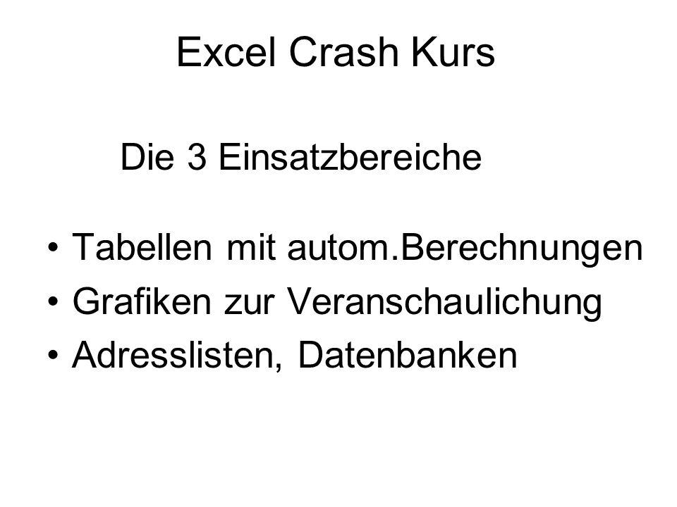 Excel Crash Kurs Tabellen mit autom.Berechnungen Grafiken zur Veranschaulichung Adresslisten, Datenbanken Die 3 Einsatzbereiche
