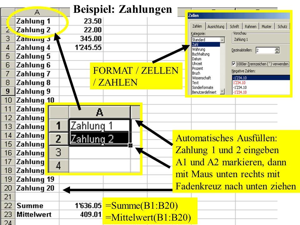 Automatisches Ausfüllen: Zahlung 1 und 2 eingeben A1 und A2 markieren, dann mit Maus unten rechts mit Fadenkreuz nach unten ziehen FORMAT / ZELLEN / Z