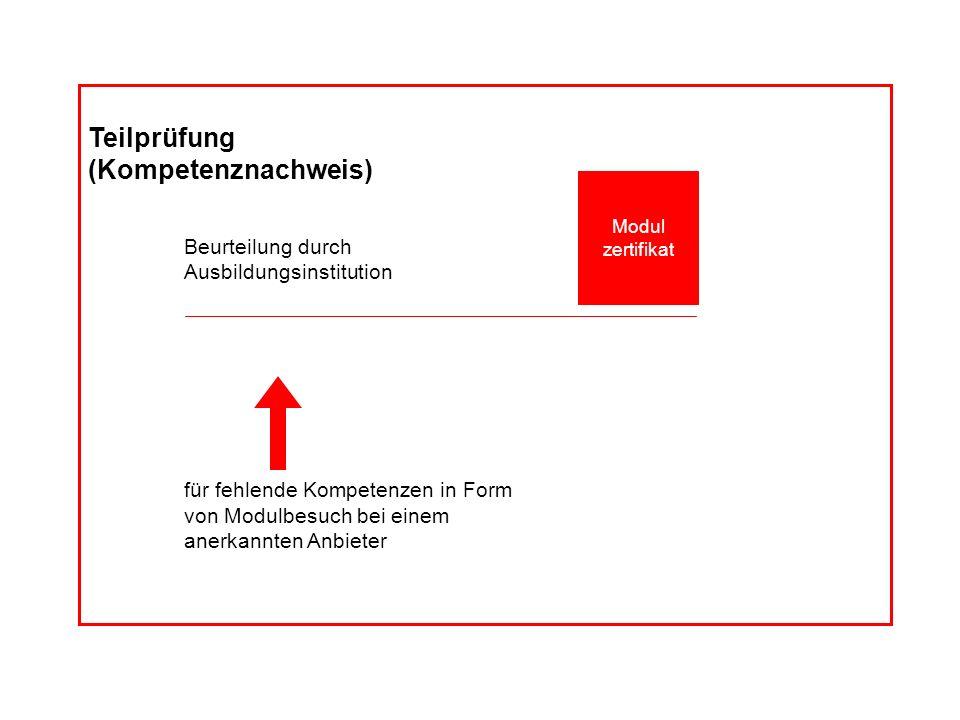Dossier Kompetenz- profil Teilprüfung (Kompetenznachweis) Beurteilung durch Ausbildungsinstitution für fehlende Kompetenzen in Form von Modulbesuch be