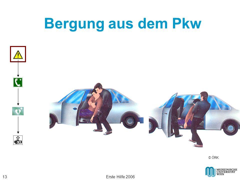 Erste Hilfe 200613 Bergung aus dem Pkw © ÖRK