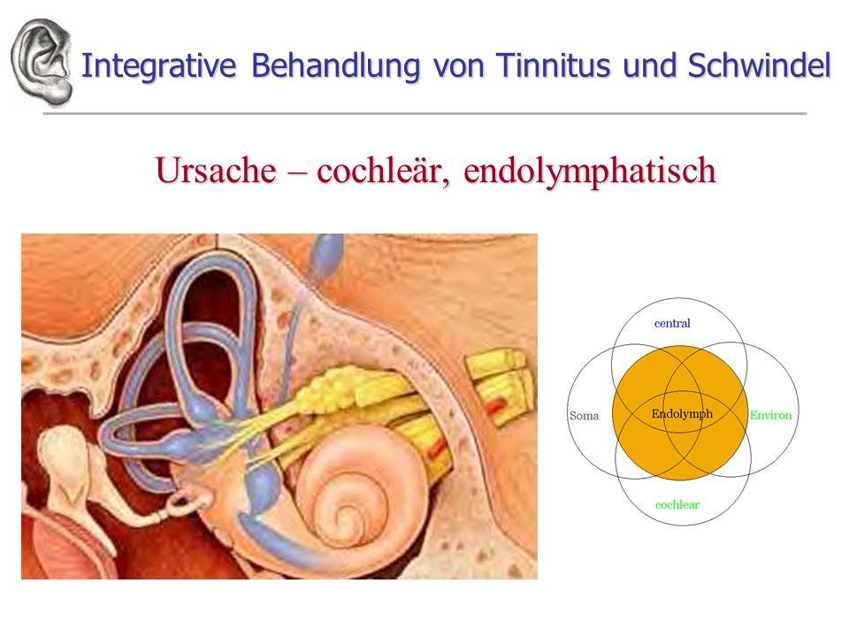 Integrative Behandlung von Tinnitus und Schwindel Ursache – cochleär, endolymphatisch