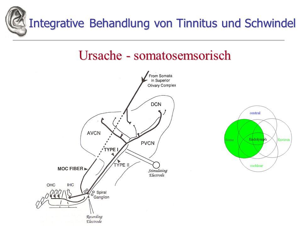 Integrative Behandlung von Tinnitus und Schwindel Ursache - somatosemsorisch