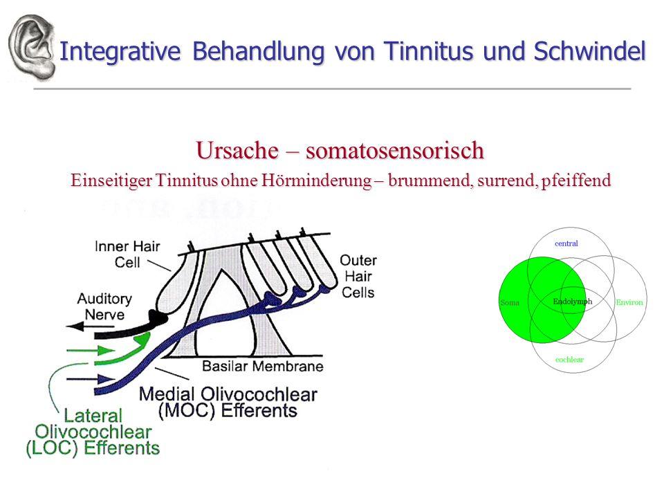Integrative Behandlung von Tinnitus und Schwindel Ursache – somatosensorisch Einseitiger Tinnitus ohne Hörminderung – brummend, surrend, pfeiffend
