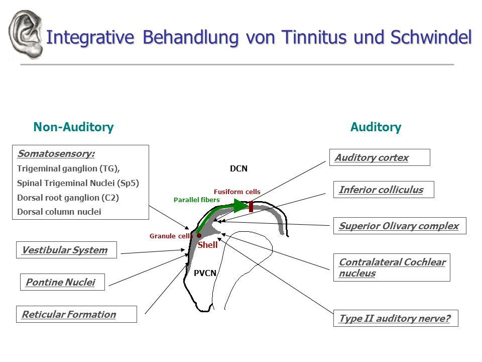 Integrative Behandlung von Tinnitus und Schwindel Shell PVCN DCN Non-AuditoryAuditory Somatosensory: Trigeminal ganglion (TG), Spinal Trigeminal Nucle