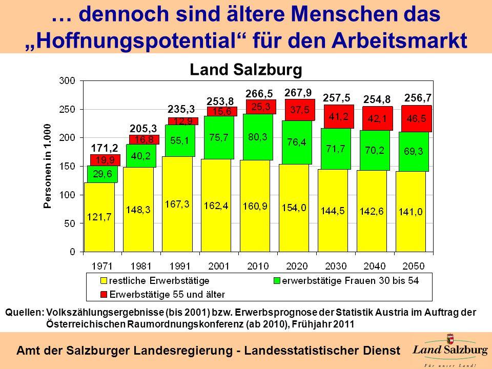 Seite 20 Amt der Salzburger Landesregierung - Landesstatistischer Dienst … dennoch sind ältere Menschen das Hoffnungspotential für den Arbeitsmarkt 17