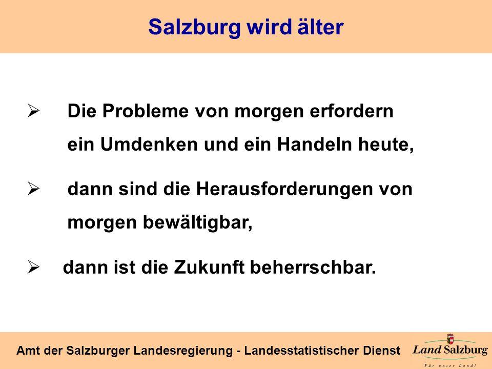 Seite 52 Amt der Salzburger Landesregierung - Landesstatistischer Dienst Die Probleme von morgen erfordern ein Umdenken und ein Handeln heute, dann si