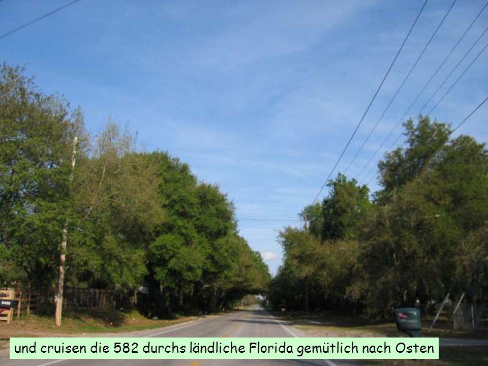 und cruisen die 582 durchs ländliche Florida gemütlich nach Osten
