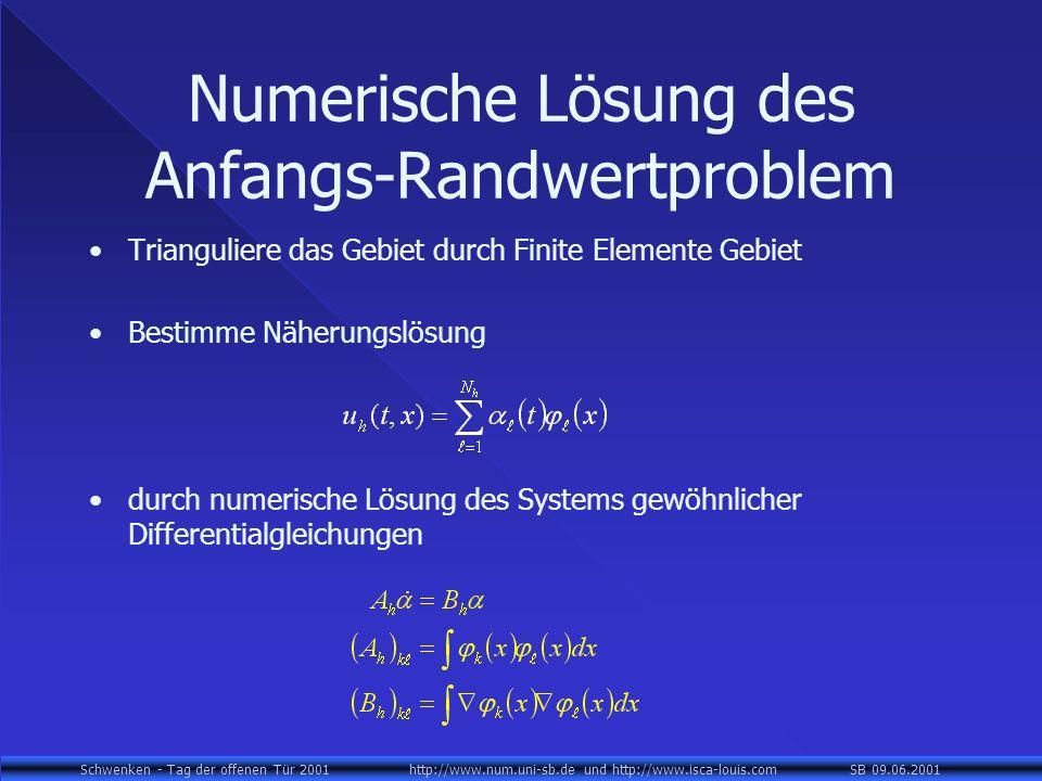 Schwenken - Tag der offenen Tür 2001 http://www.num.uni-sb.de und http://www.isca-louis.com SB 09.06.2001 Numerische Lösung des Anfangs-Randwertproble