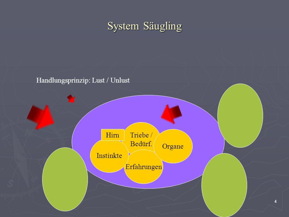 4 System Säugling Handlungsprinzip: Lust / Unlust Triebe / Bedürf. Erfahrungen Instinkte Hirn Organe