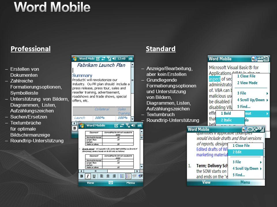 Professional Standard –Erstellen von Dokumenten –Zahlreiche Formatierungsoptionen, Symbolleiste –Unterstützung von Bildern, Diagrammen, Listen, Aufzäh