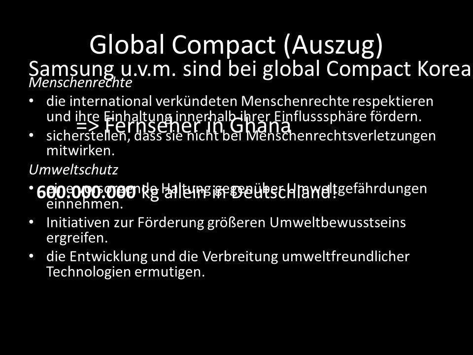 Global Compact (Auszug) Menschenrechte die international verkündeten Menschenrechte respektieren und ihre Einhaltung innerhalb ihrer Einflusssphäre fördern.