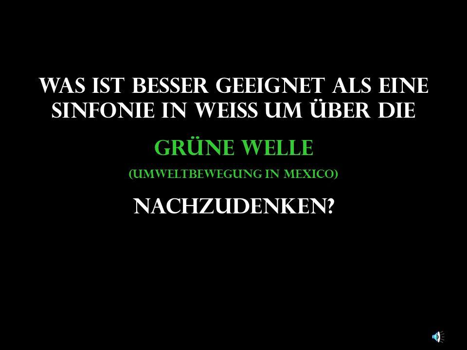Was ist besser geeignet als eine Sinfonie in weiß um über die grüne Welle (Umweltbewegung in mexico) nachzudenken?