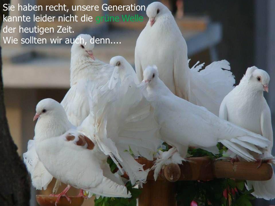 Genau das ist heute unser Problem. Ihre Generation hatte nicht genügend Umsicht unsere Umwelt zu bewahren.