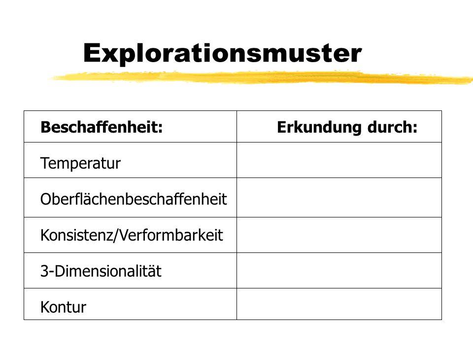 Explorationsmuster Beschaffenheit:Erkundung durch: Temperatur Oberflächenbeschaffenheit Konsistenz/Verformbarkeit 3-Dimensionalität Kontur