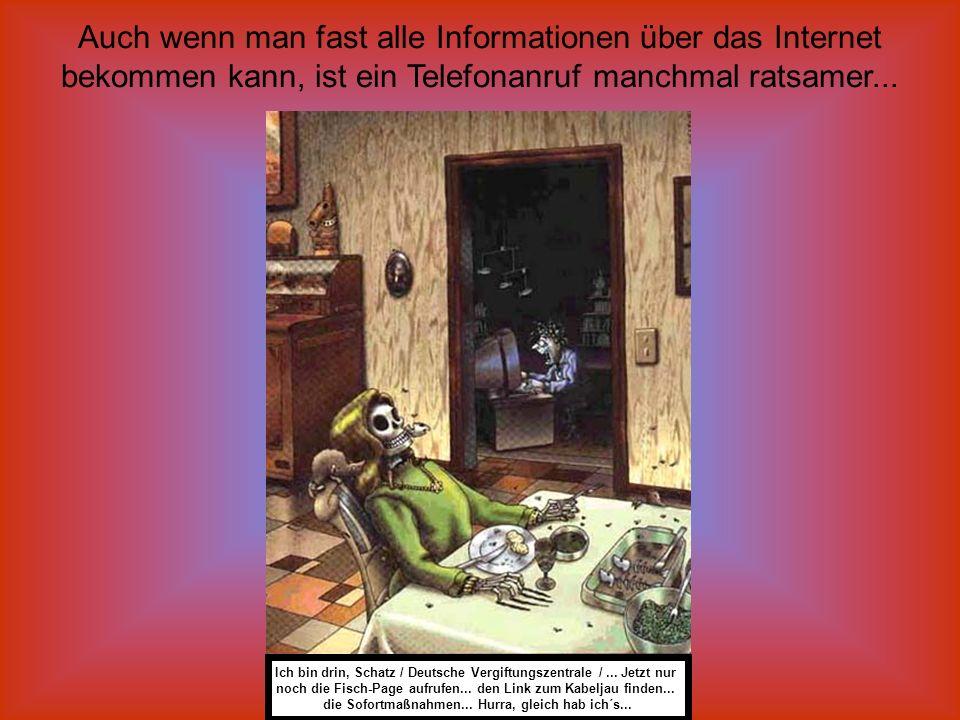 Auch wenn man fast alle Informationen über das Internet bekommen kann, ist ein Telefonanruf manchmal ratsamer... Ich bin drin, Schatz / Deutsche Vergi
