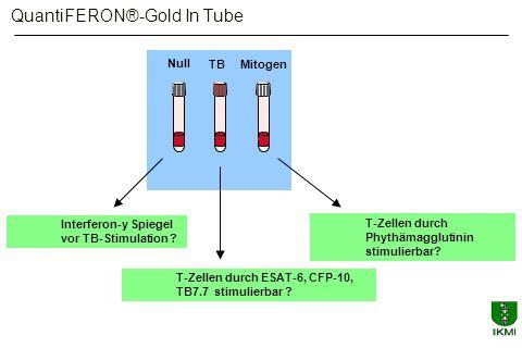 Null TBMitogen Interferon-y Spiegel vor TB-Stimulation ? T-Zellen durch ESAT-6, CFP-10, TB7.7 stimulierbar ? T-Zellen durch Phythämagglutinin stimulie