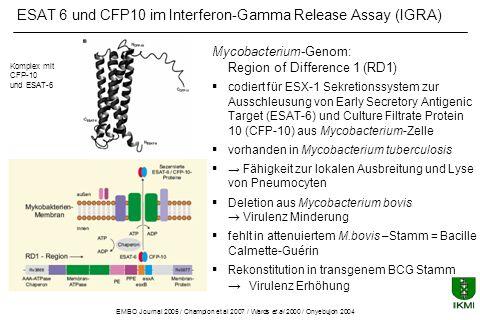 ESAT 6 und CFP 10 in Mycobacteriaceae Environmental strains Antigene ESAT-6CFP-10 M abcessus-- M avium-- M branderi-- M celatum-- M chelonae-- M fortuitum-- M gordonii-- M intracellulare-- M kansasii++ M malmoense-- M marinum++ M oenavense-- M scrofulaceum-- M smegmatis-- M szulgai++ M terrae-- M vaccae-- M xenopi-- Tuberculosis complex Antigene ESAT- 6 CFP-10 M tuberculosis++ M africanum++ M bovis++ BCG substrain gothenburg-- moreau-- tice-- tokyo-- danish-- glaxo-- montreal-- pasteur--