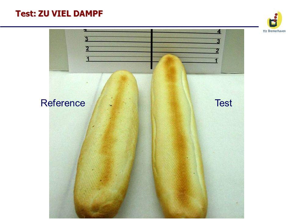 Test: ZU VIEL DAMPF ReferenceTest