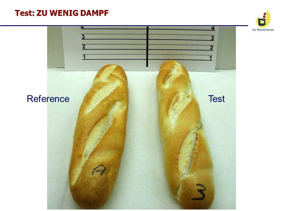 Test: ZU WENIG DAMPF ReferenceTest