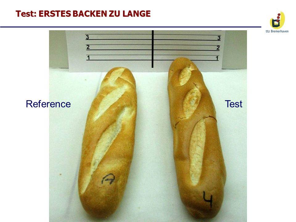 Test: ERSTES BACKEN ZU LANGE ReferenceTest