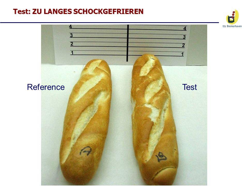 Test: ZU LANGES SCHOCKGEFRIEREN ReferenceTest