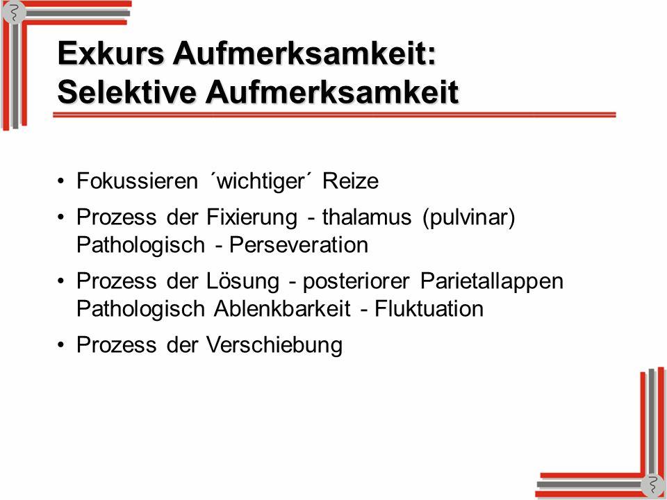 Exkurs Aufmerksamkeit: Selektive Aufmerksamkeit Fokussieren ´wichtiger´ Reize Prozess der Fixierung - thalamus (pulvinar) Pathologisch - Perseveration