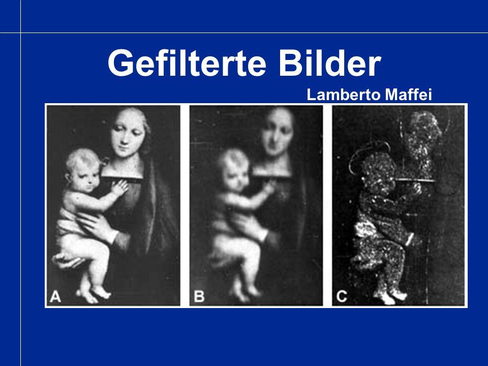 Gefilterte Bilder Lamberto Maffei