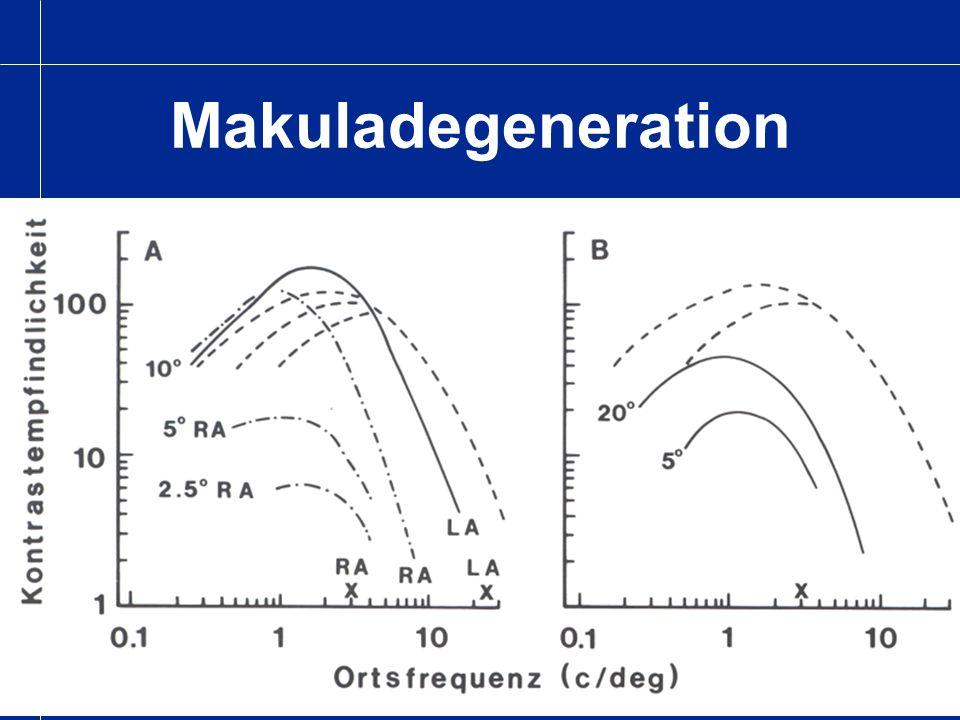 Optikusneuritis Genesungsphase