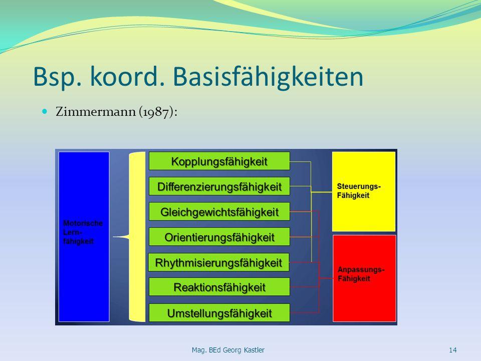 Bsp. koord. Basisfähigkeiten Zimmermann (1987): Mag. BEd Georg Kastler14