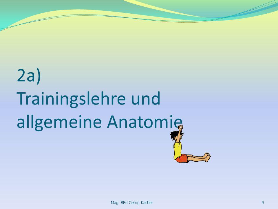 2a) Trainingslehre und allgemeine Anatomie Mag. BEd Georg Kastler9