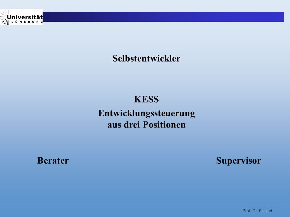 Prof. Dr. Sieland Selbstentwickler KESS Entwicklungssteuerung aus drei Positionen BeraterSupervisor