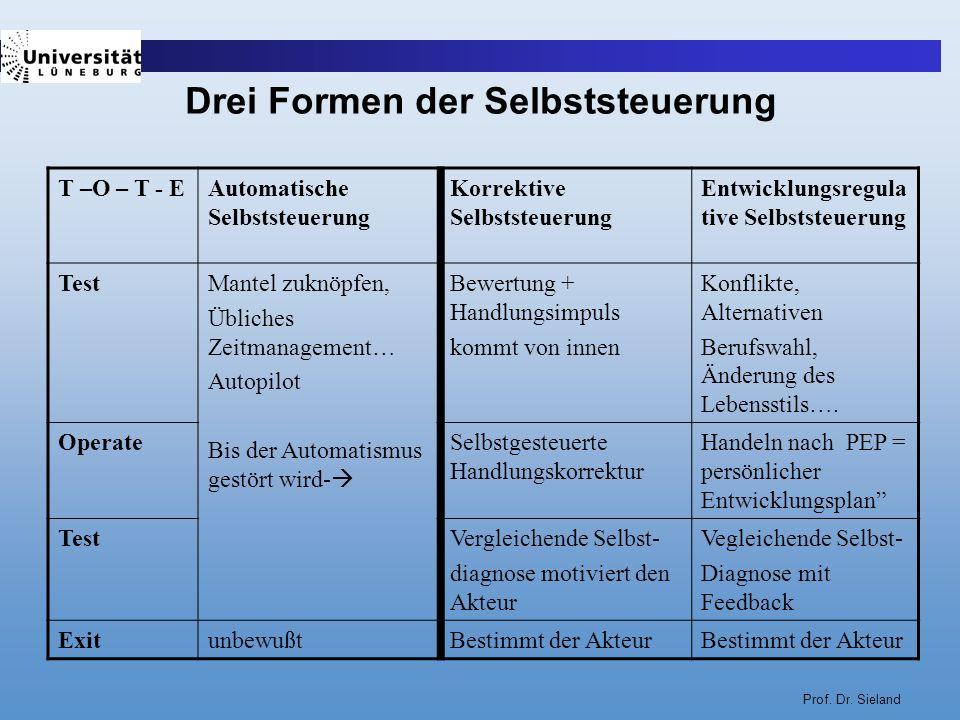 Prof. Dr. Sieland Drei Formen der Selbststeuerung T –O – T - EAutomatische Selbststeuerung Korrektive Selbststeuerung Entwicklungsregula tive Selbstst