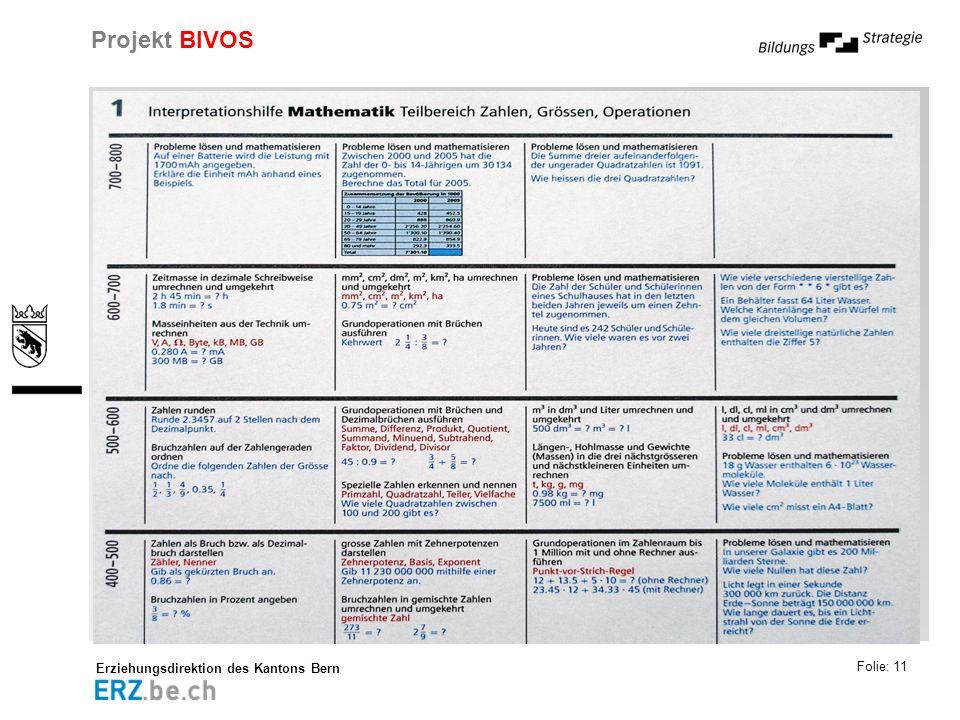Erziehungsdirektion des Kantons Bern Projekt BIVOS Folie: 11