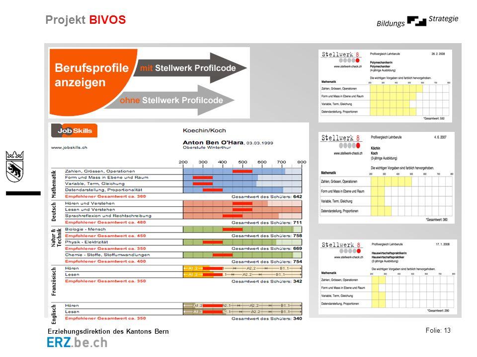Erziehungsdirektion des Kantons Bern Projekt BIVOS Folie: 13