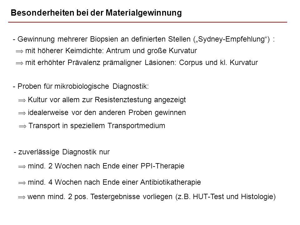 Besonderheiten bei der Materialgewinnung - Gewinnung mehrerer Biopsien an definierten Stellen (Sydney-Empfehlung) : mit höherer Keimdichte: Antrum und