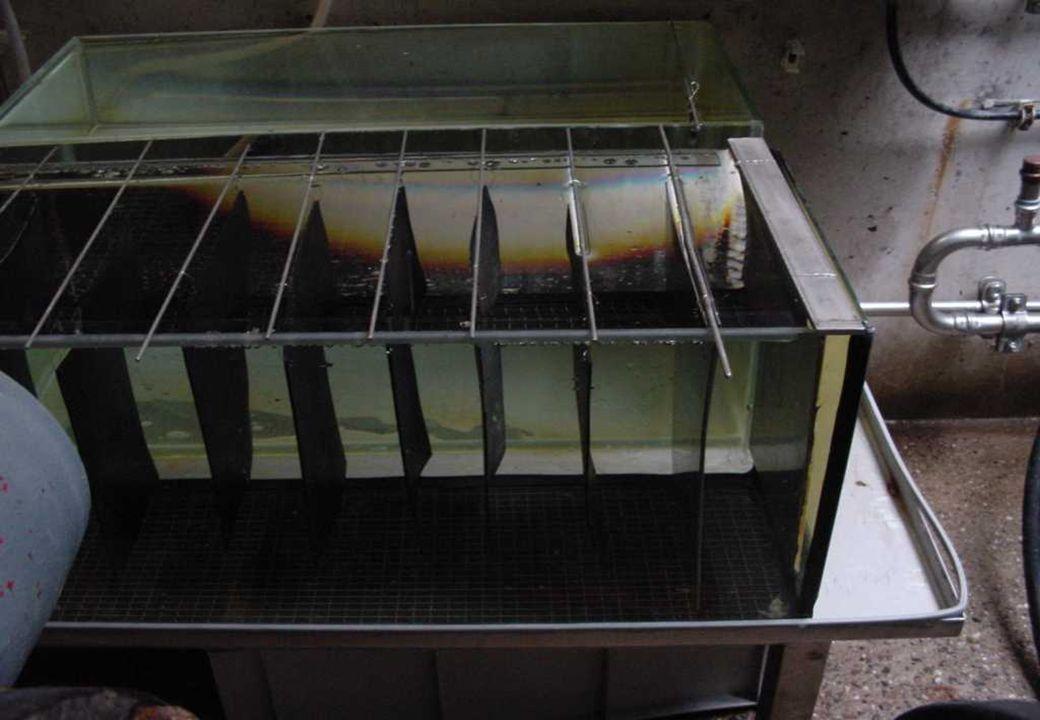 C 2009 Tuschewitzki Hygiene-Institut des Ruhrgebiets Institut für Umwelthygiene und Umweltmedizin www.hyg.de 26