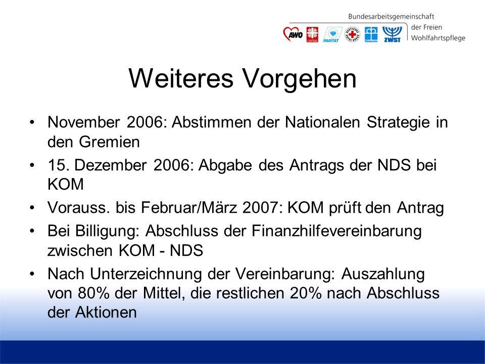 Weiteres Vorgehen November 2006: Abstimmen der Nationalen Strategie in den Gremien 15.