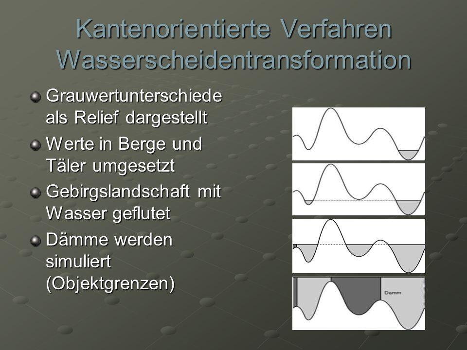 Kantenorientierte Verfahren Wasserscheidentransformation Grauwertunterschiede als Relief dargestellt Werte in Berge und Täler umgesetzt Gebirgslandsch