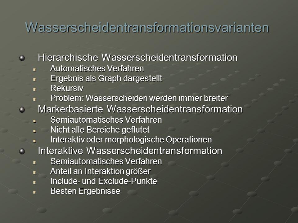 Wasserscheidentransformationsvarianten Hierarchische Wasserscheidentransformation Automatisches Verfahren Automatisches Verfahren Ergebnis als Graph d