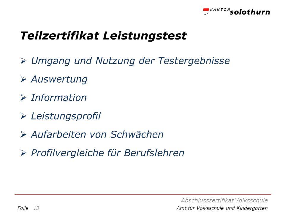 FolieAmt für Volksschule und Kindergarten Teilzertifikat Leistungstest Umgang und Nutzung der Testergebnisse Auswertung Information Leistungsprofil Au