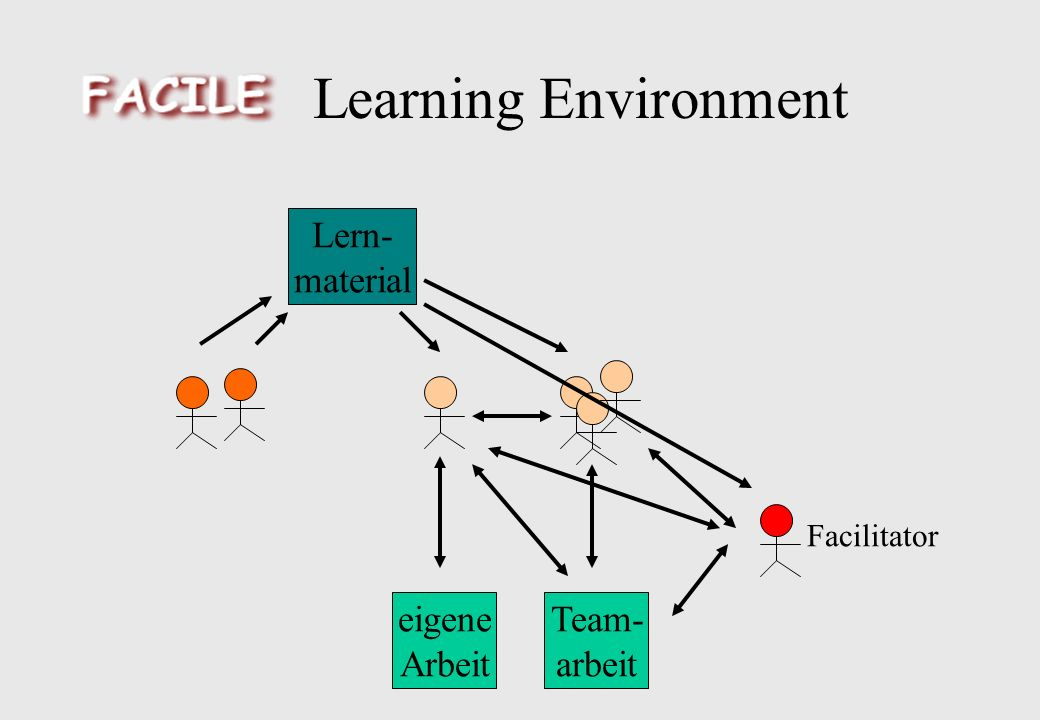 Learning Environment eigene Arbeit Team- arbeit Lern- material Facilitator