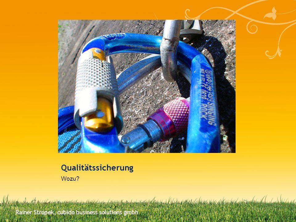 Qualitätssicherung Wozu? Rainer Stropek, cubido business solutions gmbh
