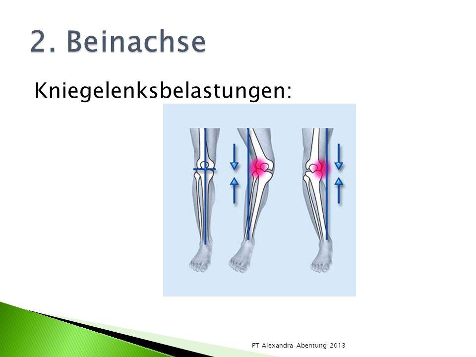 Kniegelenksbelastungen: PT Alexandra Abentung 2013