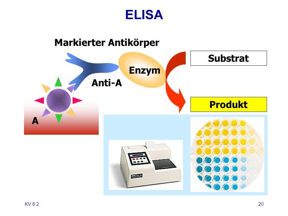 KV 8.220 ELISA Anti-A Markierter Antikörper A Enzym Substrat Produkt