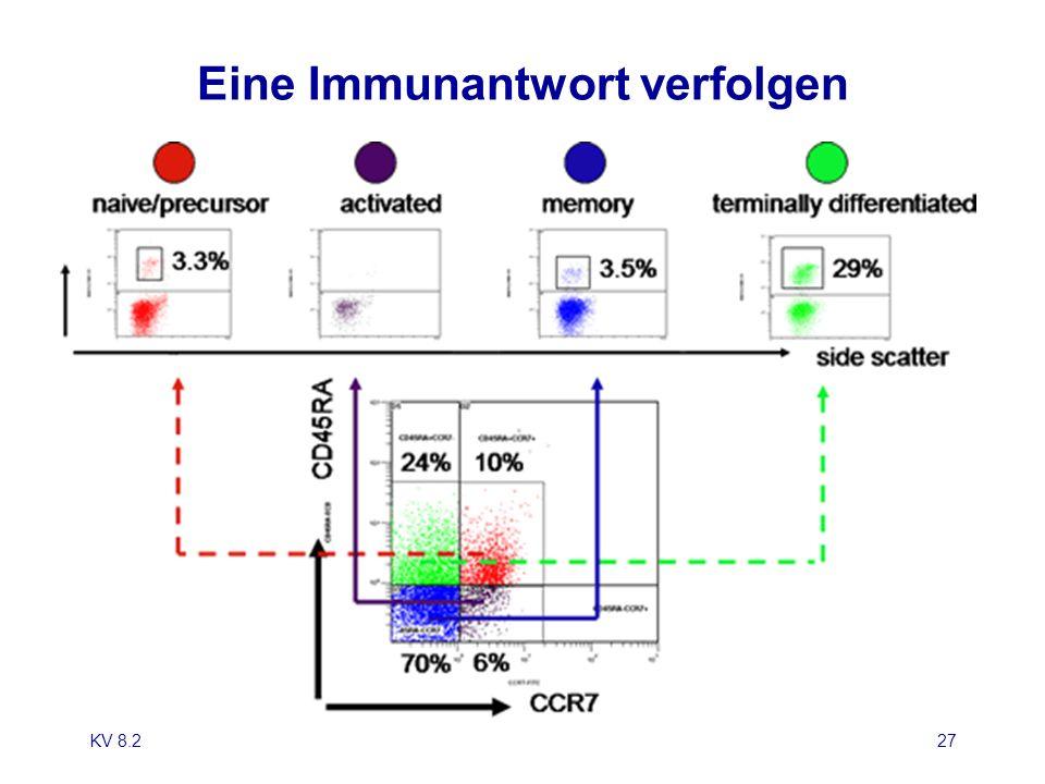 KV 8.228 CD-Marker bei der Diagnose von lymphohämopoietischen Erkrankungen StammzellePrä-B.frühe B.mittlere B.reife B.plasmozytoide B.Plasmazelle ALL PLL, Burkitt Lymphom CLL, foll.