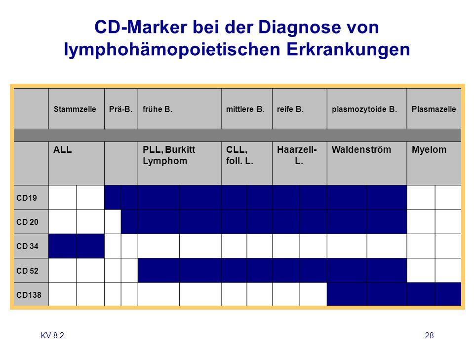 KV 8.228 CD-Marker bei der Diagnose von lymphohämopoietischen Erkrankungen StammzellePrä-B.frühe B.mittlere B.reife B.plasmozytoide B.Plasmazelle ALL